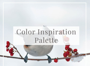 WinterBird-Winter White, Beige, Gray, and Red_Featured
